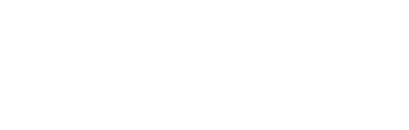 Millennial Leadership Assessment